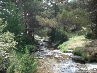 Valle del Lozoya - Camino de la Angostura;sierra de gredos senderismo senderismo sierra madrid